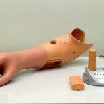 protesis biometrica