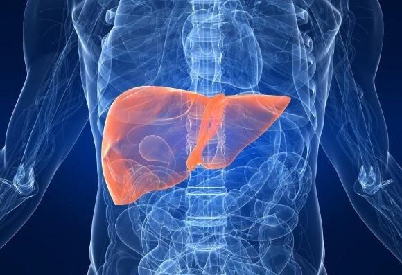 enfermedad renal ramucirumab