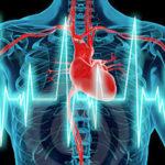 coronaria ejercicio