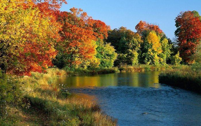 cuencas de rios