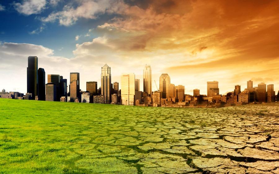 """""""El cambio climático incrementará la tasa de mortalidad"""