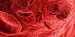 Glóbulos en arteria, ya que este mes se celebra el mes del cáncer hematológico