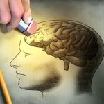 memoria y la cognición