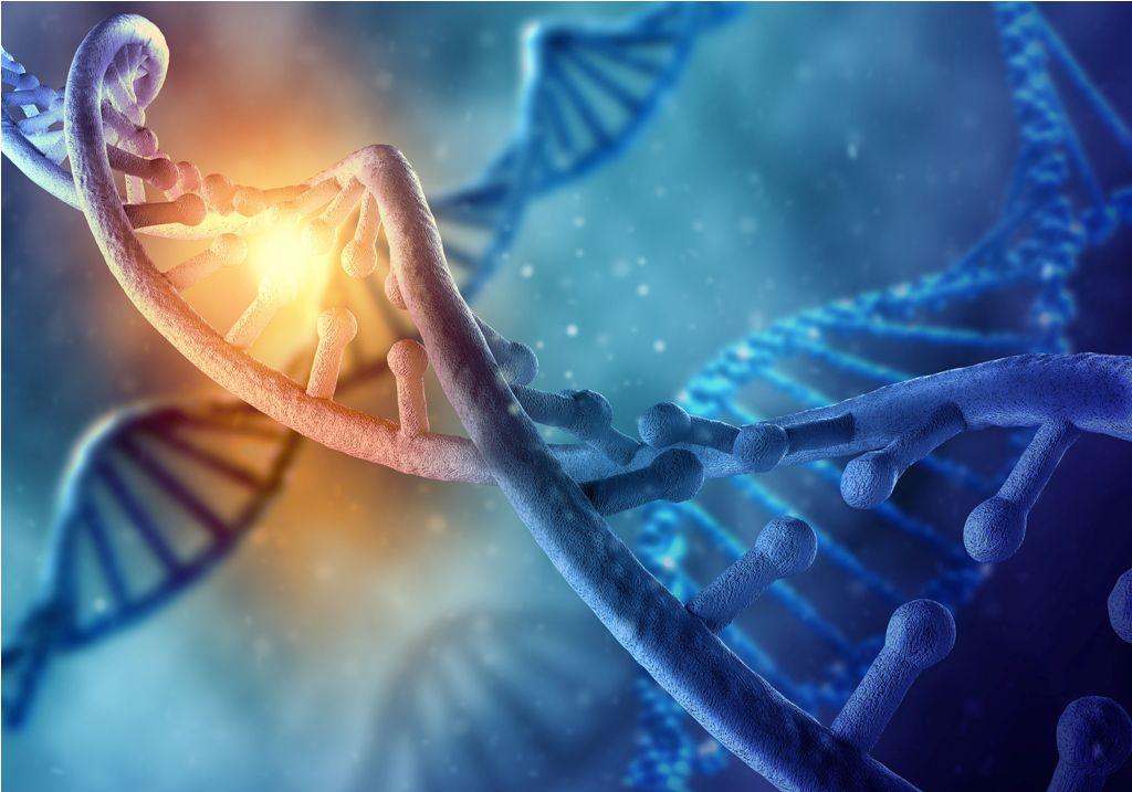 trasplante de células madre tipo diabetes