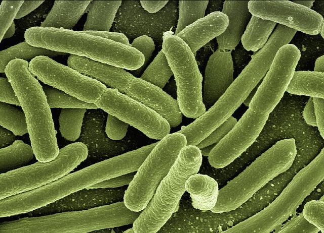 resistencias antibioticas