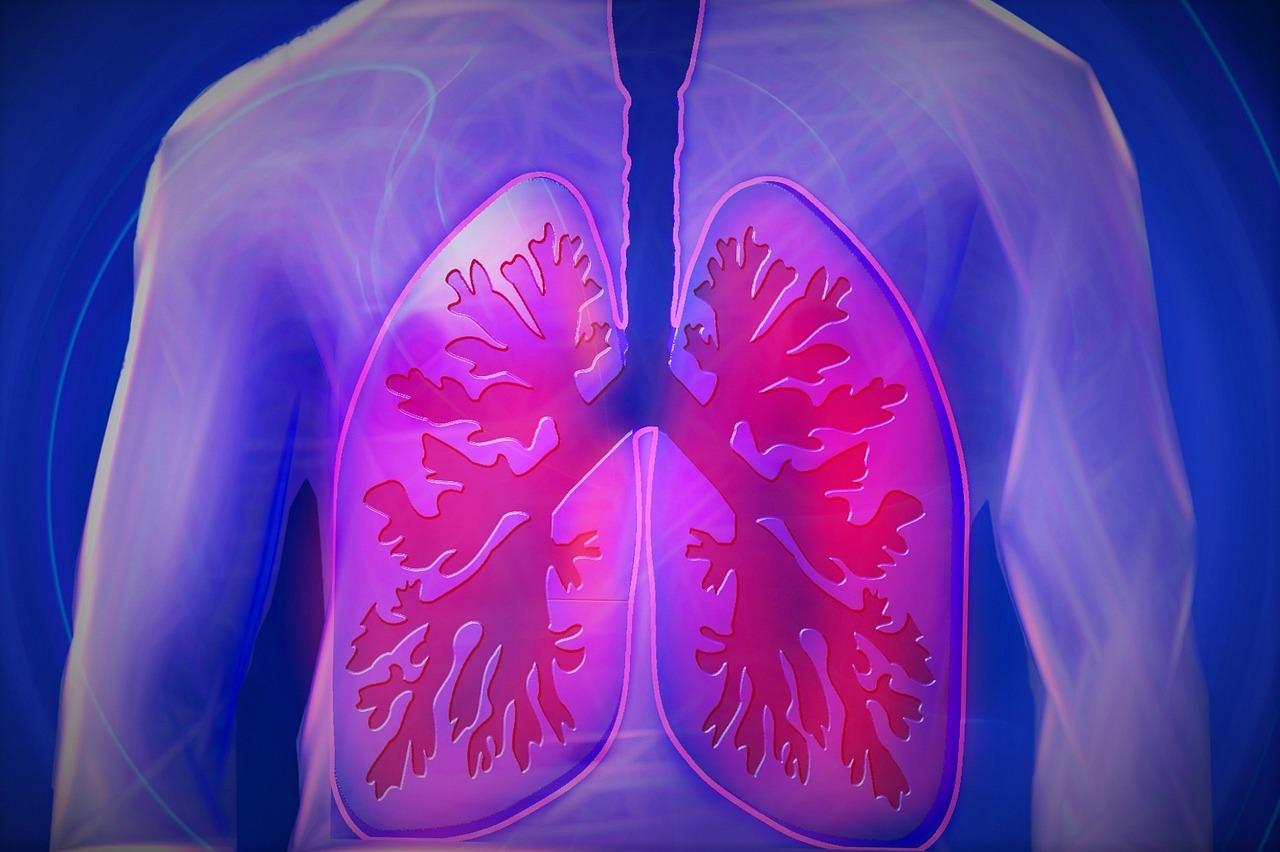 Como sacar la flema de los pulmones en ninos