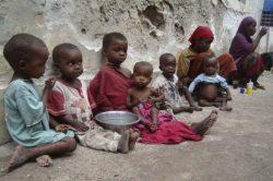 """""""Un niño muere cada cinco segundos en el mundo por causas prevenibles"""