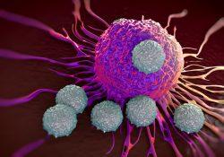 """""""Consiguen que la inmunoterapia funcione para el linfoma resistente al tratamiento"""