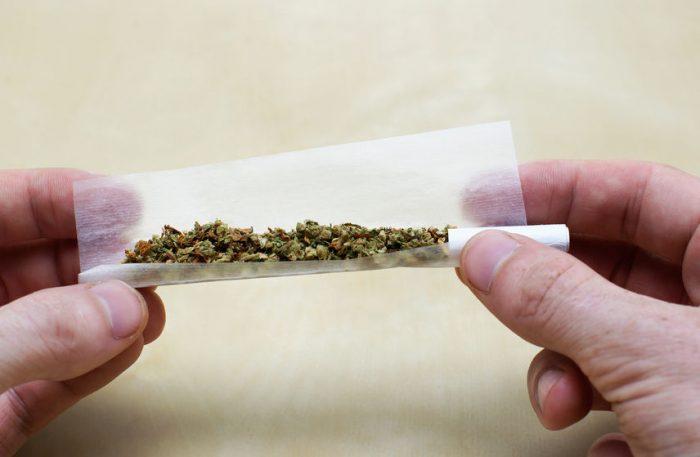 Plan Nacional Drogas