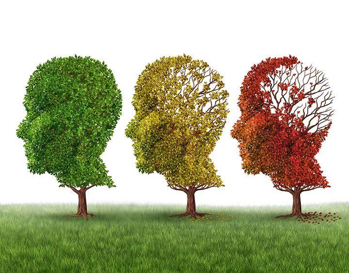 edad promedio para tener demencia