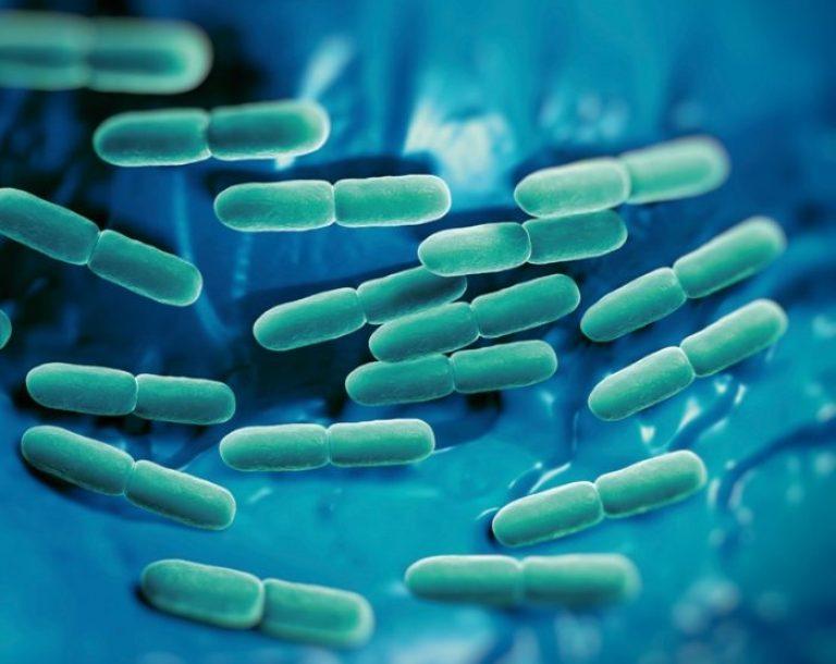efectos secundarios probióticos sobre la diabetes