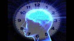El reloj circadiano