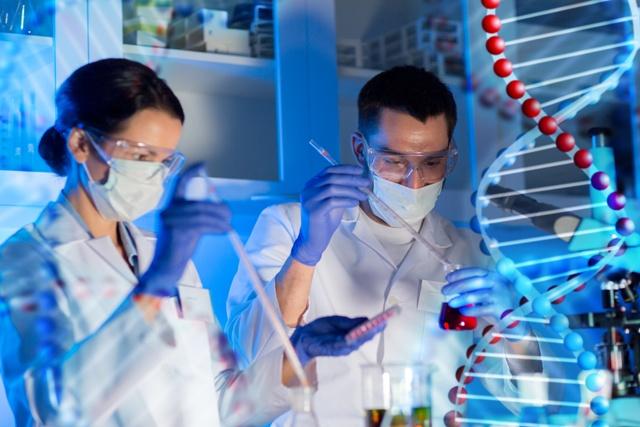 Roche investigación oncológica