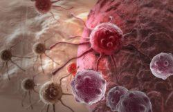 """""""Pfizer anuncia novedades para el abordaje de la leucemia linfoblástica aguda y mieloide aguda"""