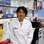 trasplante de microbiota fecal