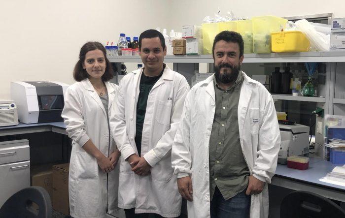 Instituto de Investigación de Santiago