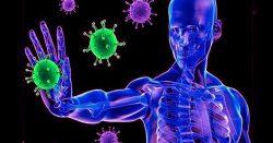 activa de forma personalizada el sistema inmunitario