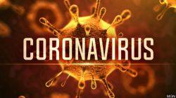 transmisibilidad y virulencia coronavirus