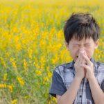 vacunas polen alergia