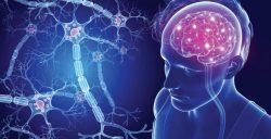 Ofatumumab, aprobado para la esclerosis múltiple en EE. UU.