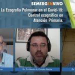Momento del webinar de SEMERGEN sobre ecografía pulmonar
