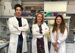 Investigadores Universidad de Granada