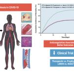 La enfermedad tromboembólica es una complicación de COVID-19