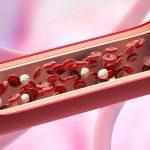 El control del colesterol permite manejar el riesgo cardiovascular