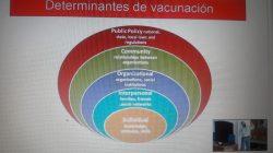 determinantes para la seguridad de las vacunas