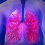Células T memoria en los pulmones