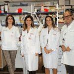 Imagen de los científicos que investigan las alteraciones mitocondriales que podrían anunciar rechazo en trasplante de corazón