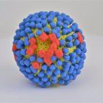 vacuna intranasal contra la gripe