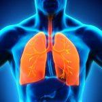 Tuberculosis y COVID-19 pueden confundirse, según la SEPAR. Imagen de recurso de unos pulmones