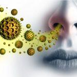 Alergia a polen. El circuito Primaria-Alergología
