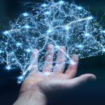 neurobiología del TOC
