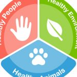 enfoque one health