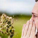 Aumenta la predisposición a tener alergia al polen y la sensibilización a varios tipos