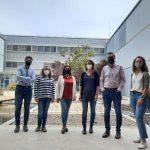 Estudio Nanogeles transportadores
