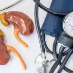 Aparato para medir la tensión, denervación renal