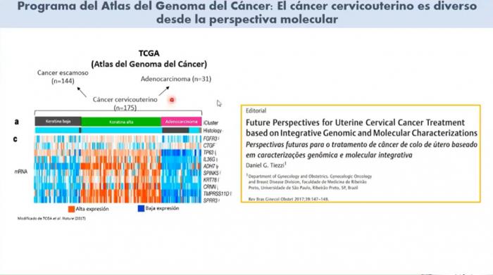 atlas del genoma del cáncer